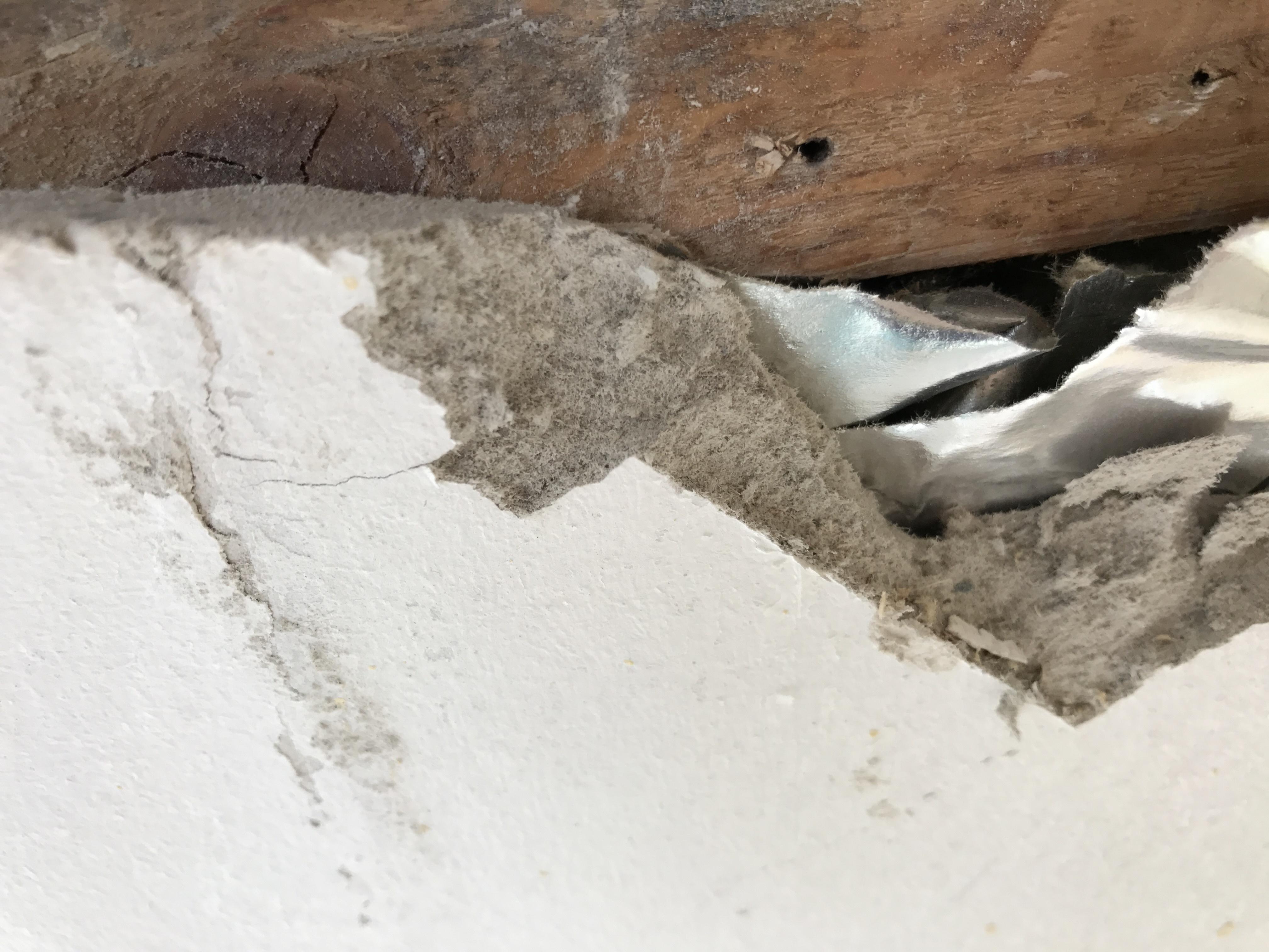 Asbest In Fußbodenplatten ~ Ist das asbest? wer weiss was.de